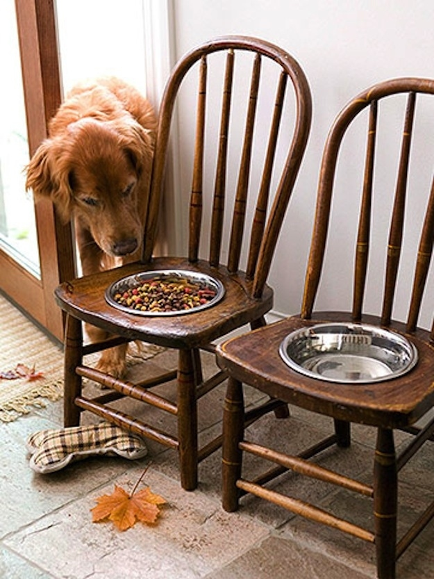For a big dog, vintage chairs prop up food bowls nicely.