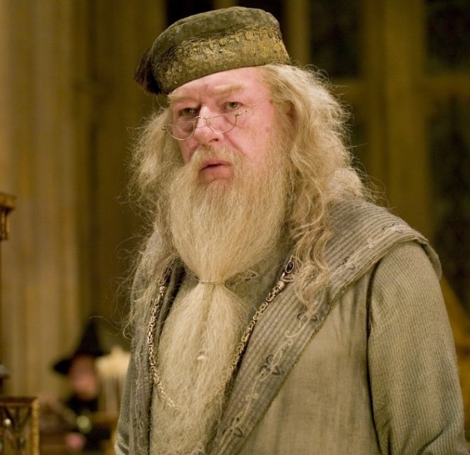 As Albus Dumbledore in Harry Potter