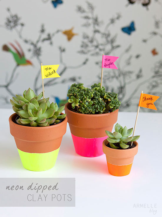 Dorm Rooms Can Feel Unbearably Sterile, So Bring In Some Life With A Few  Plants Part 28