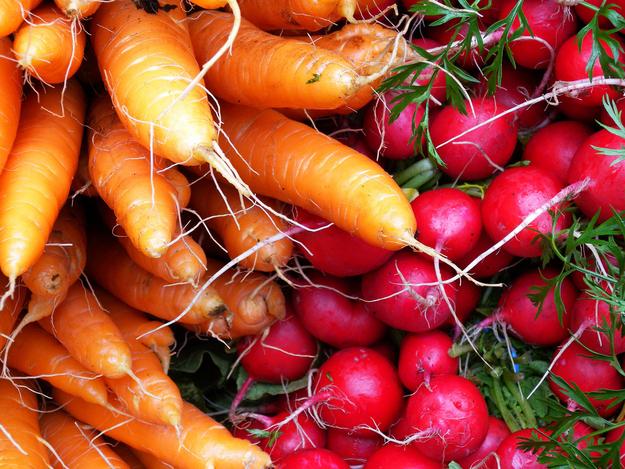 Carrots & Radishes