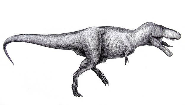 psa you ve been drawing t rex wrong your whole life
