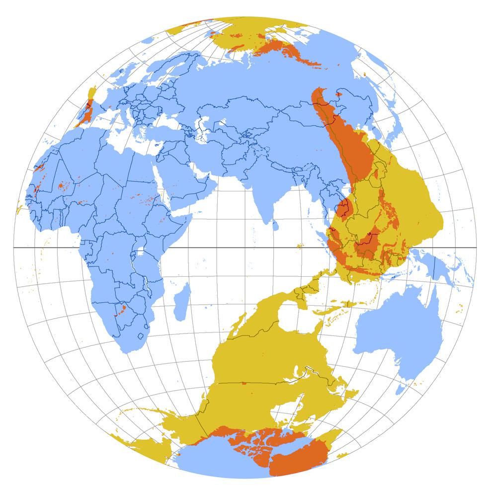 Un mapa que muestra qué hay en el lado exactamente opuesto del planeta: