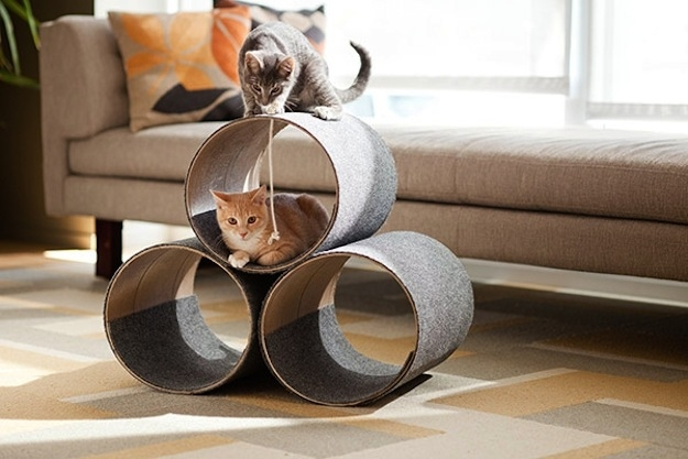 These tubes are perfect for hiding and scratching.
