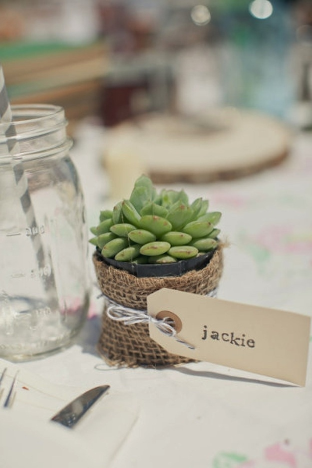 Succulent Place Cards 35 Cute And Clever
