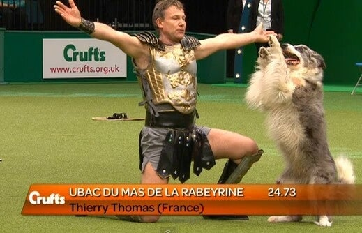 """Dog dancing or """"Heelwork to Music"""" premiered at Crufts in 2005. It has since become a crowd favorite, existing somewhere between rhythmic gymnastics and Dancing With the Stars. Costumes are also involved."""