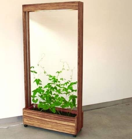 This Planter On Casters Is A Super Clever Way To Provide Movable Divider
