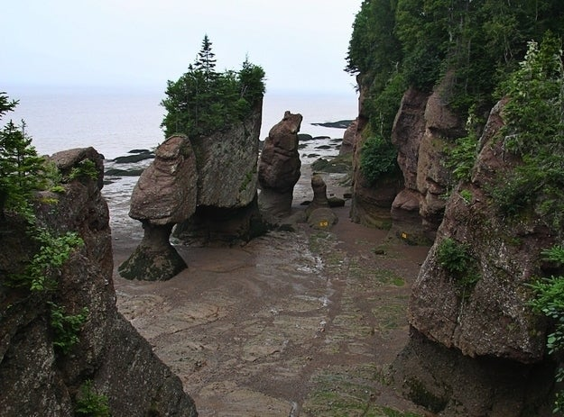 The only thing better than one penis rock is a whole village of them! The little one has character, don't you think?