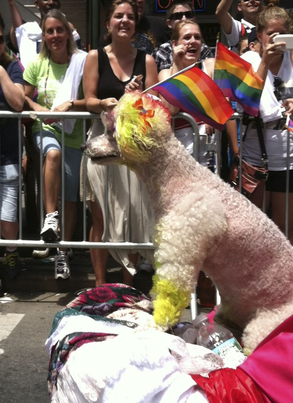 33 Moments From The N.Y.C. Gay Pride Parade That Made Me Smile
