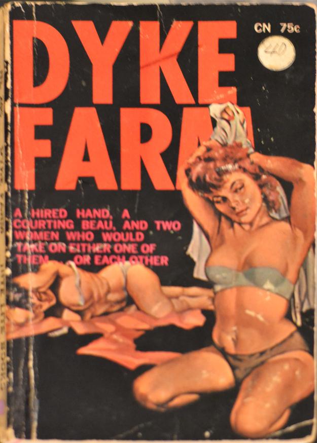 Lesbian Novels 11