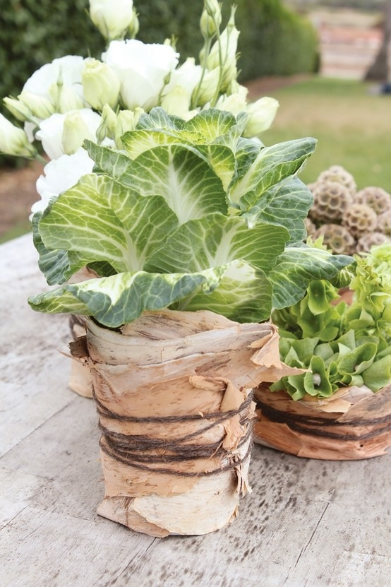 Make a rustic centerpiece with bark: