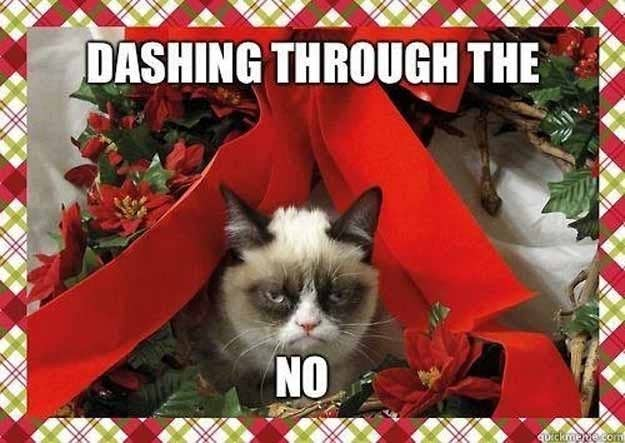 Image result for grumpy cat christmas memes