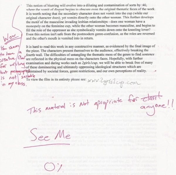 2girls 1 cup essay
