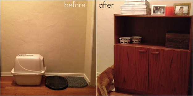 view this image cat lovers 27 diy solutions