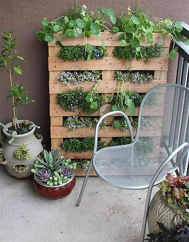 Turn a pallet upright for shelved planting.