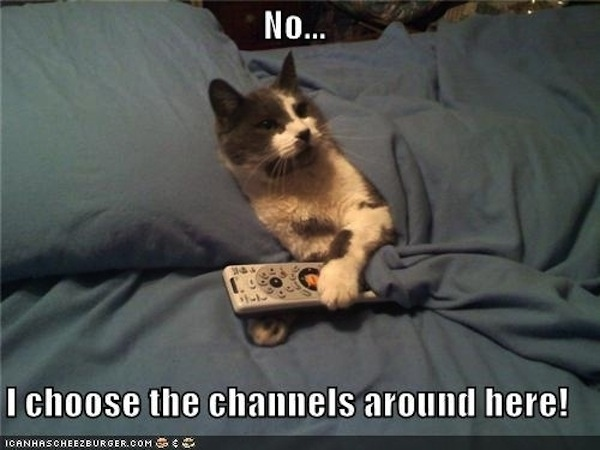 Thou shalt not hog the remote.