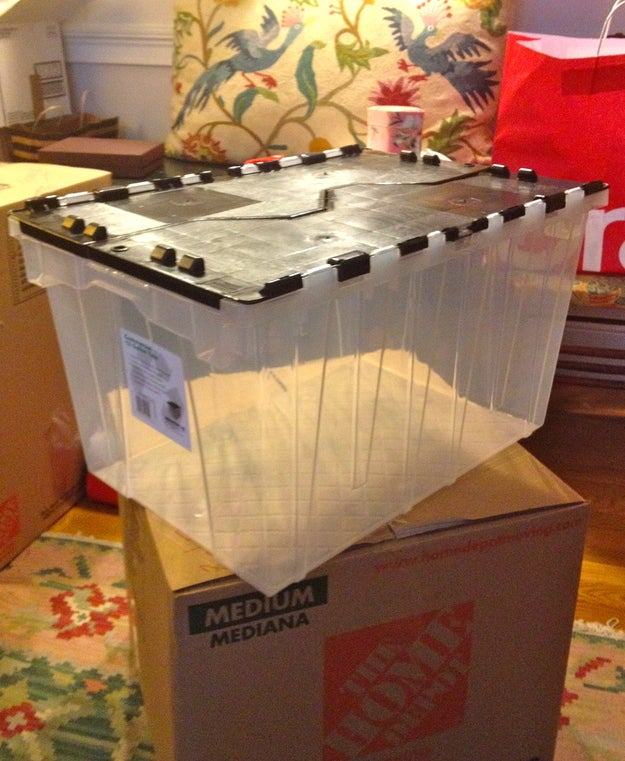 This includes things like a box cutter, paper towels, trash bags, eating utensils, select cookware, power strips, phone chargers, toilet paper, tools, etc. The clear bin allows you to see inside; it also separates itself from the myriad of cardboard boxes.