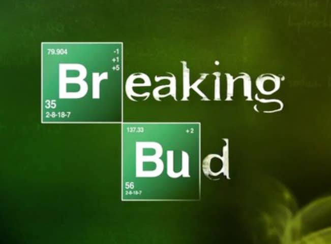 "In 10 years, Marijuana will probably be legalized. Look for your first ""Breaking Bad"" spin-off."