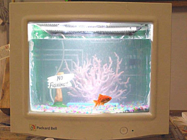 According to the step-by-step guide, the end result is a functional fish tank. But please remember to thoroughly research what types of sea life will thrive in this pretty microtank!