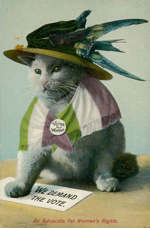Yes, you're seeing this right. It's a poster about women's suffrage that prominently features a cat. Unfortunately, unlike today, the cat wasn't seen as cute and positive but rather as domestic and mocking. Read more about these images here.
