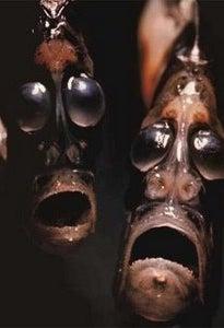 Peixe Hatchet