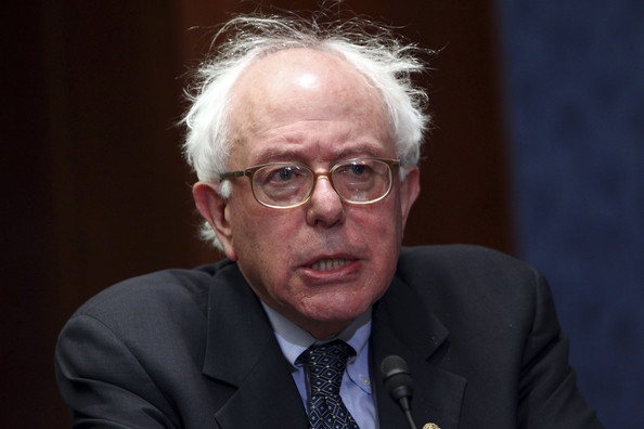 Image result for bernie sanders hair
