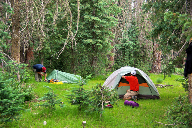 Pitch your tent entrance facing into the wind to discourage mosquitos from congregating.