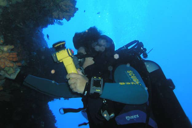 Things No One Knows About The Ocean - 23 amazing things divers discovered bottom ocean