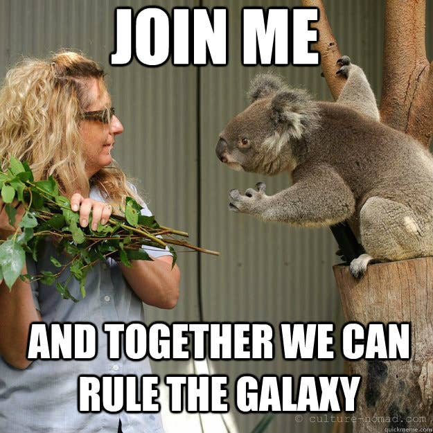 Proof Positive Koalas Are Secretly Evil Gremlins