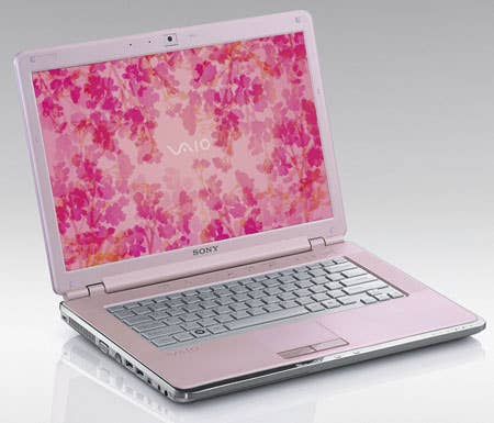 Of course, a pink PC is going to appeal to all women. Just like blue is what men want.