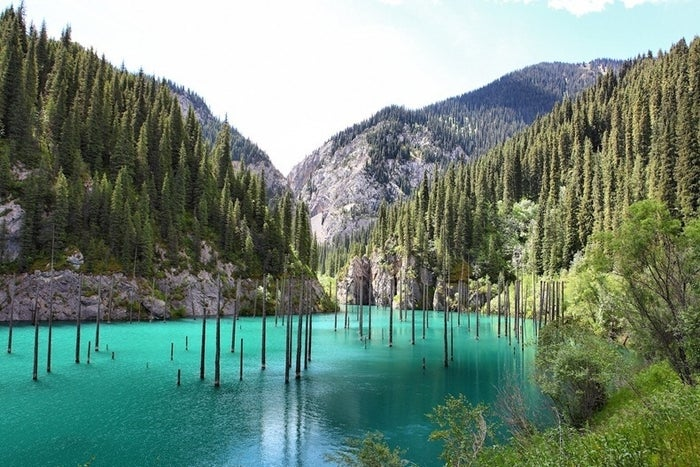 Kaindy Lake is a 400 meter long lake in Kazakhstan's portion of the Tian Shan Mountains located 129 km from the city of Almaty.Source