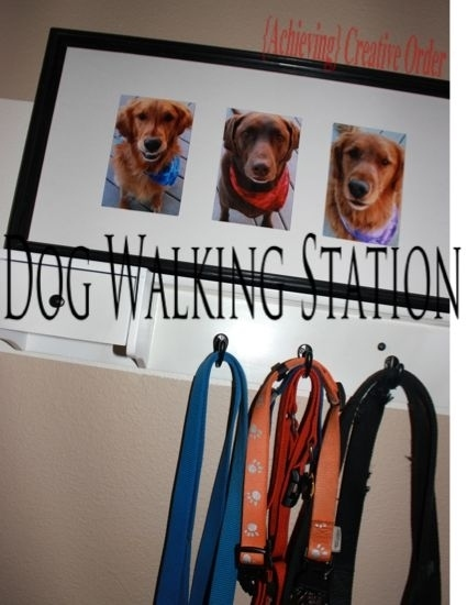 Make a dog-walking station for the entryway if you have more than one dog.