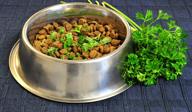 Sprinkle parsley on your dog's food for fresher breath.