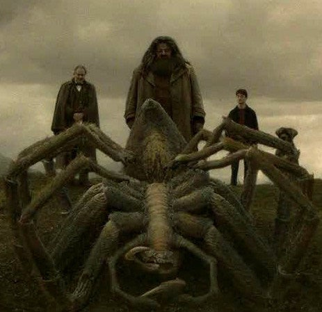 As Aragog in Harry Potter and the Chamber of Secrets
