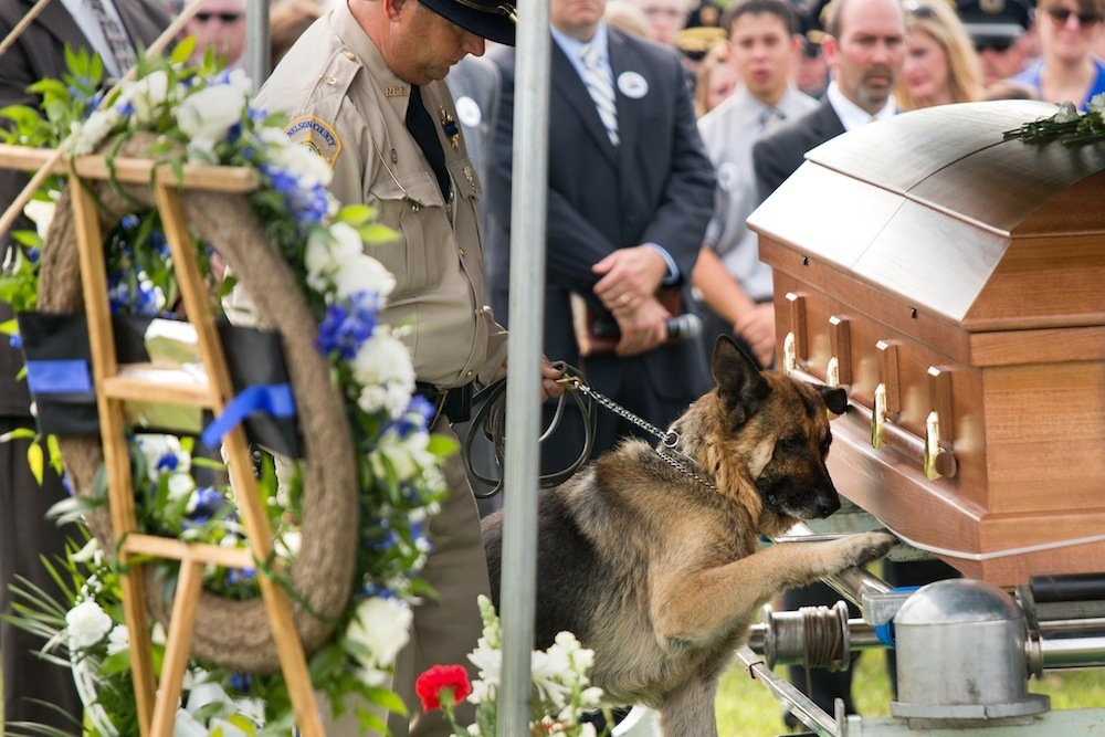Heartbreaking Photo Of A Police Dog Saying Good-Bye To His Fallen Partner