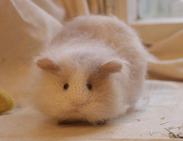 Newborn Teddy Bear Hamsters