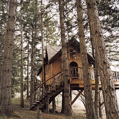 Nestled within a grove of Douglas fir and hemlocks, this cozy little shingled tree house is equal parts Swiss Family Robinson and Brothers Grimm. This may or may not be the same tree house once inhabited by Carlton Banks. Read more