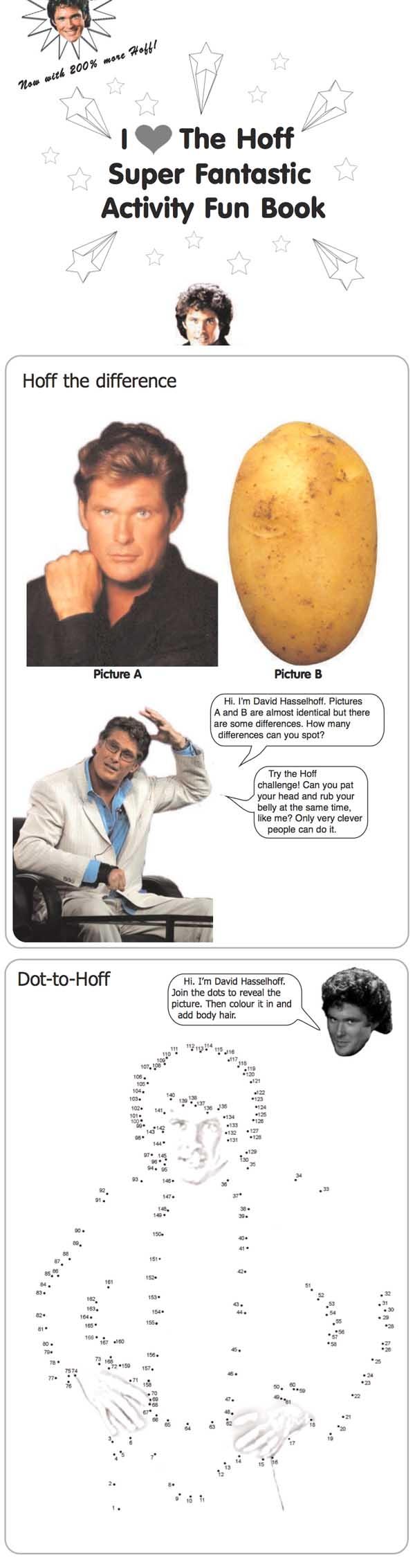 David Hasselhoff Activity Book