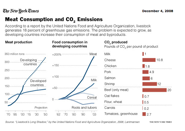 Meat Consumption and CO2 Emission