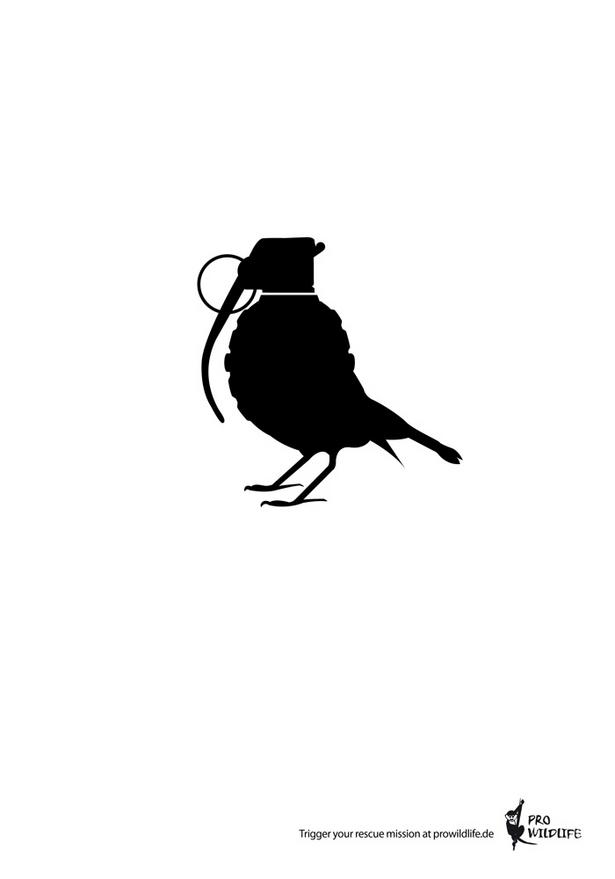 Bird Grenade