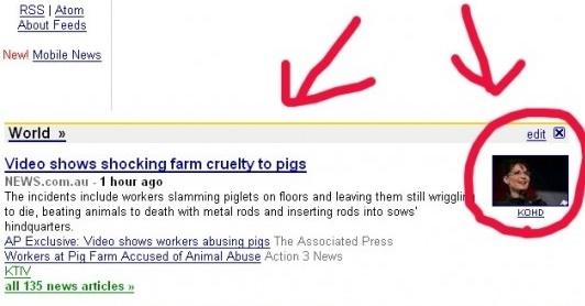 Google News Palin Pig Slip Up