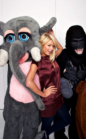 Paris Hilton Posing Sexy with Non-Sexy Items