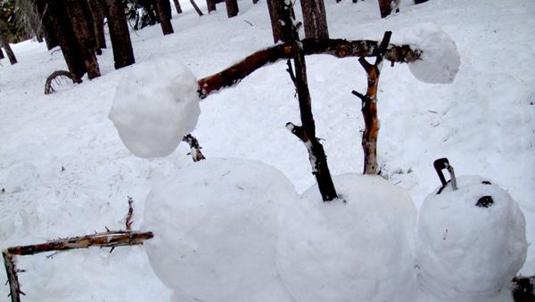 Bench-Pressing Snowman