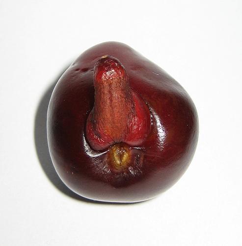 Grossest Cherry Ever