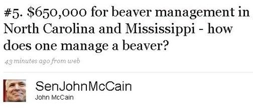 John McCain's Beaver Management