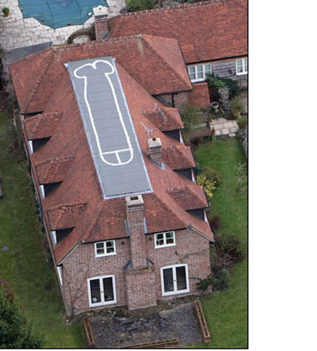Dick on the Roof