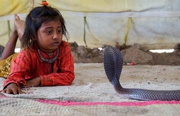 Snake Charmer Kids