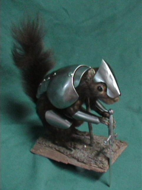 Squirrel In Shining Armor