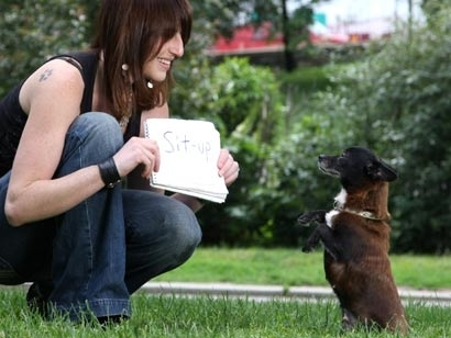 This Dog Can Read!