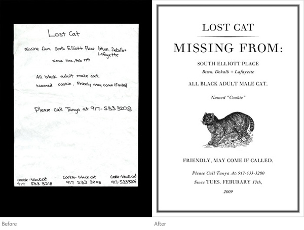 Guerrilla Missing Cat Flyers?