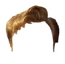Coco's Hair